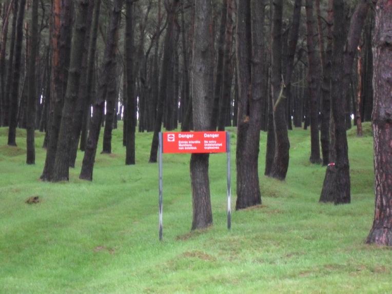 Vimy Battle field