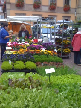 Flower filled market stall